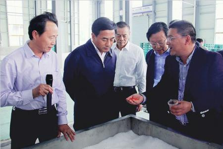 张育林等市领导督查10亿元以上重大项目推进情况