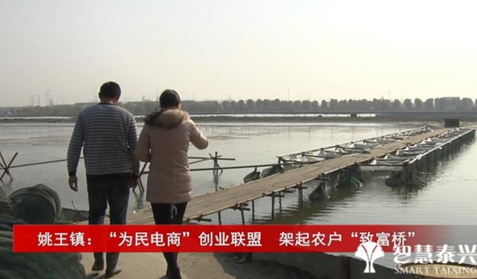 """姚王镇:""""为民电商""""创业联盟  架起农户""""致富桥"""""""