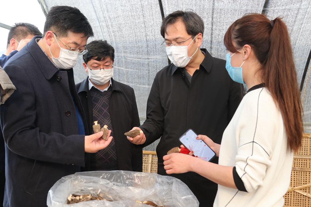 刘志明在古溪镇调研时要求——全面落实精准防控举措 统筹推进改革发展稳定